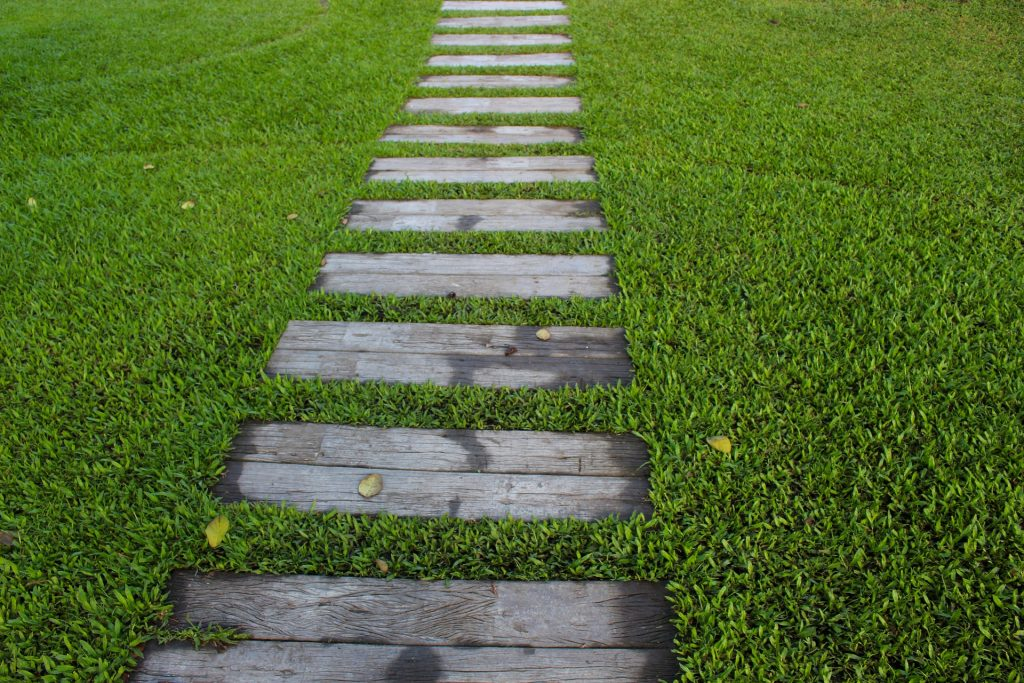 How To Choose The Best Artificial Hedge Roll?